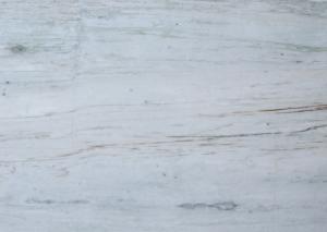 RASIKA WHITE M0189
